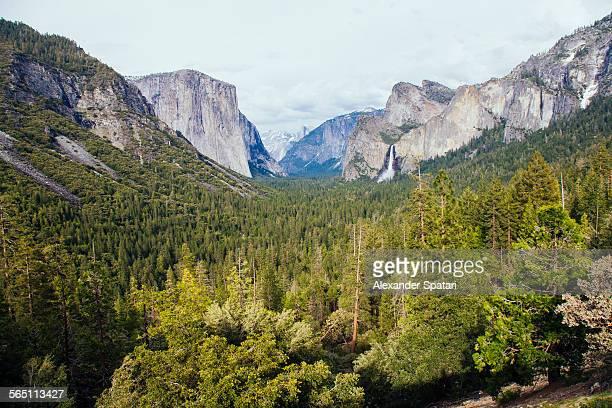 yosemite national park, united states, usa - el capitan yosemite national park stock pictures, royalty-free photos & images
