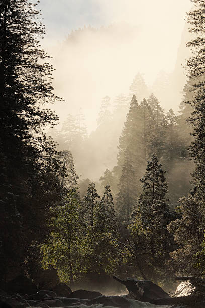Yosemite National Park  West Entrance Of With Merced River Wall Art