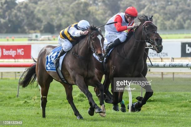 Yosemite ridden by William Pike wins the The Big Screen Company Maiden Plate at Bendigo Racecourse on August 21, 2020 in Bendigo, Australia.