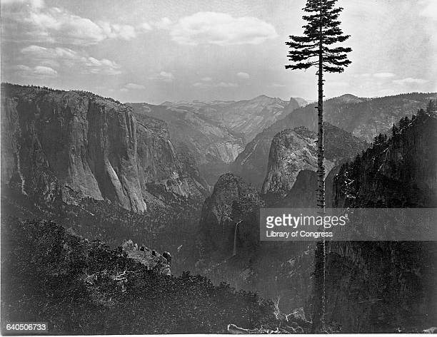 Yosemite Valley from atop a bluff 1861