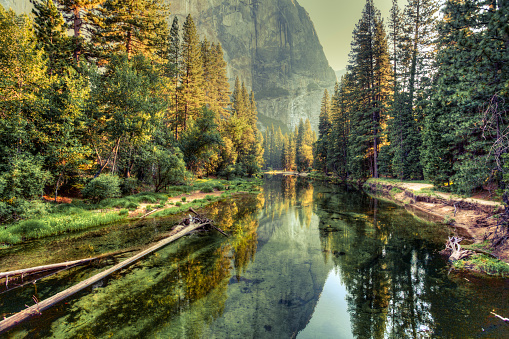Yosemite Valley Landscape and River, California 483724081