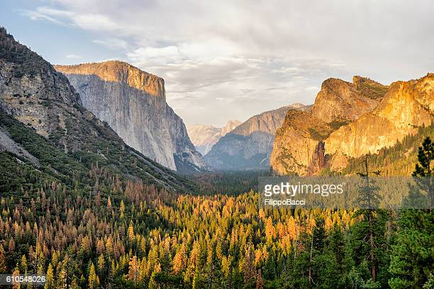 yosemite view in california - yosemite valley stock photos and pictures