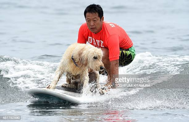 Yoshiaki Mitsui rides on a wave with his dog Pal during the animal surfing portion of the Mabo Royal Kj Cup surfing contest at Tsujido beach in...
