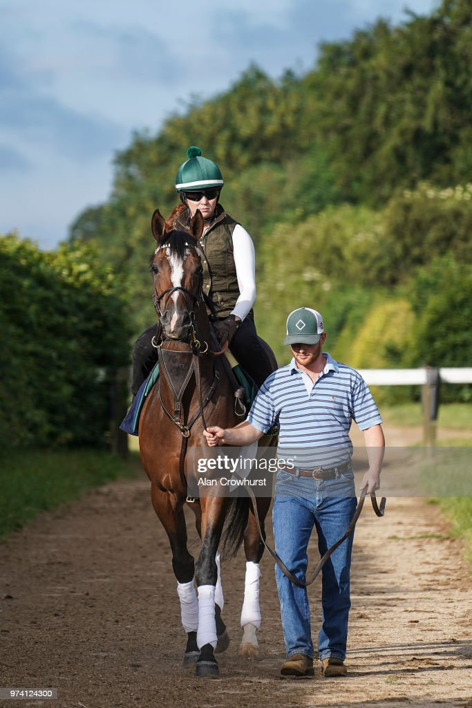 Yoshida makes its way to the gallops on June 14, 2018 in Newmarket, England.