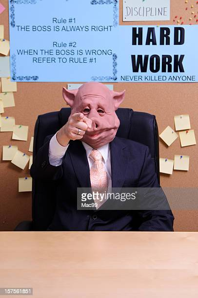 you are fired - ugly pig stock pictures, royalty-free photos & images