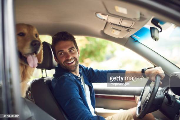 you comfy back there? - men stock pictures, royalty-free photos & images
