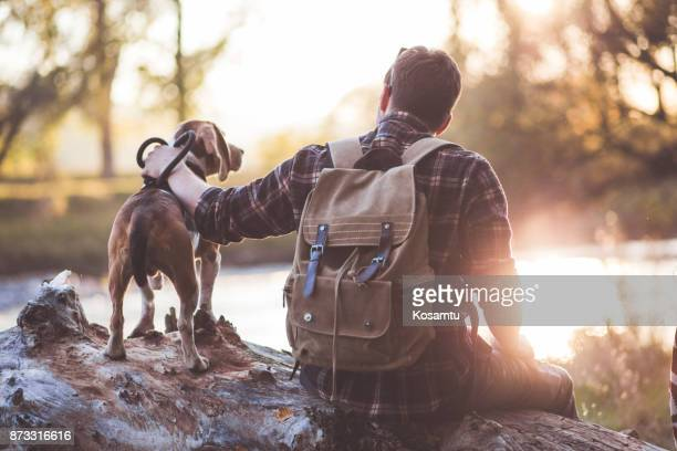 you get me - pet owner stock pictures, royalty-free photos & images