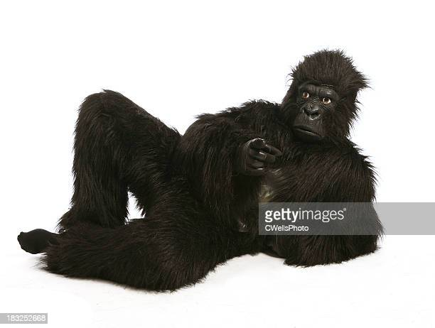 you! gorilla - monkey suit stock pictures, royalty-free photos & images