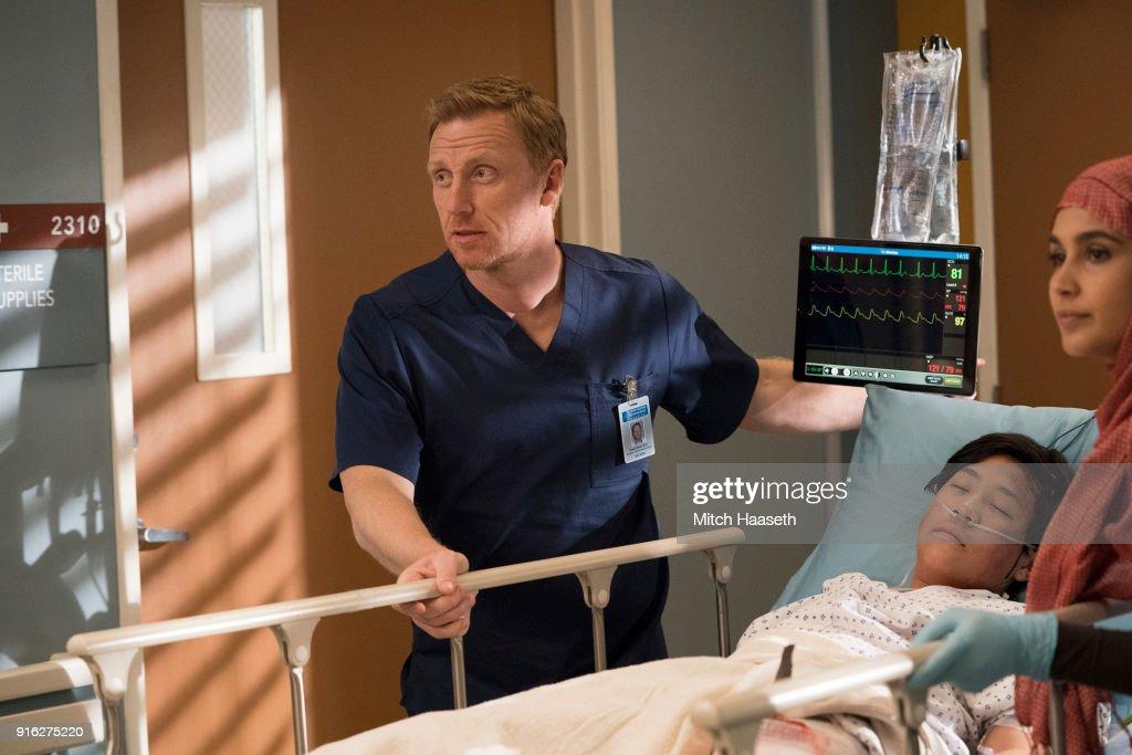 "ABC's ""Grey's Anatomy"" - Season Fourteen"