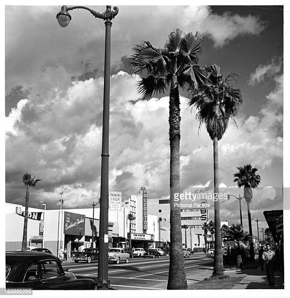 You see CBS and The Palladium while looking East on Sunset Boulevard in Hollywood, California, 1951.