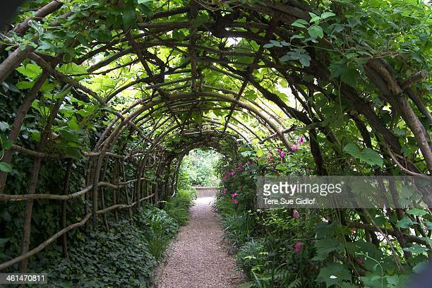 CONTENT] You walk through the Great Hall of the Castle and out into one of the loveliest small gardens ever So many clever garden ideas packed into...