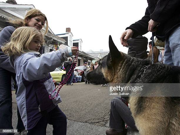 A youg girl gives beads to a dog during the Krewe of Barkus Mardi Gras parade February 19 2006 in the French Quarter of New Orleans Louisiana The...
