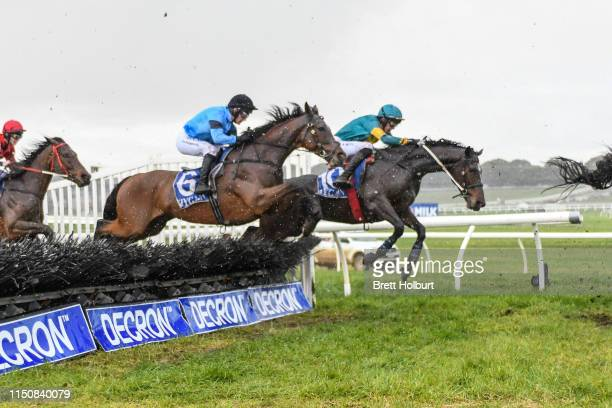 Youl Dash for Cash ridden by Shane Jackson wins the Matthew Williams Racing Maiden Hurdle at Warrnambool Racecourse on June 20 2019 in Warrnambool...