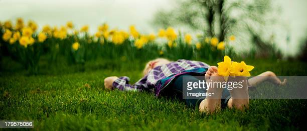 Yound girl lying in bed of Daffodils