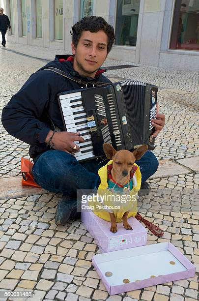 young accordion playing busker with his dog - accordionist stock pictures, royalty-free photos & images