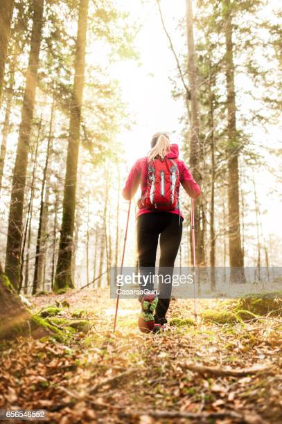 Young Active Woman Explore The Forest During Her Trekking