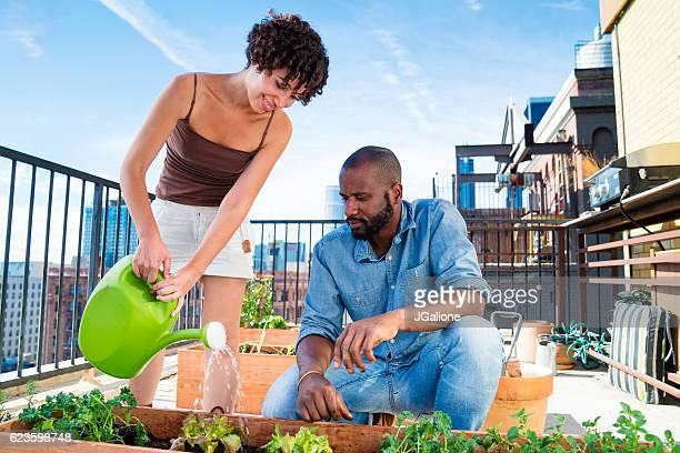 Young adult couple tending to their rooftop garden