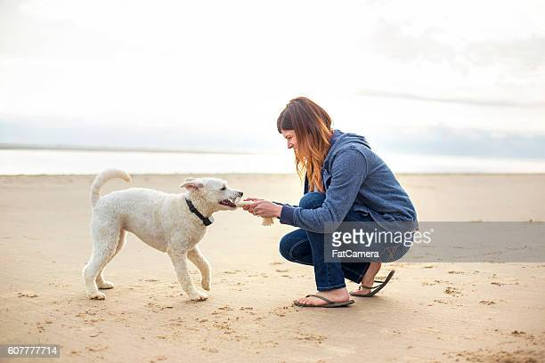 Young adult female playing with her dog