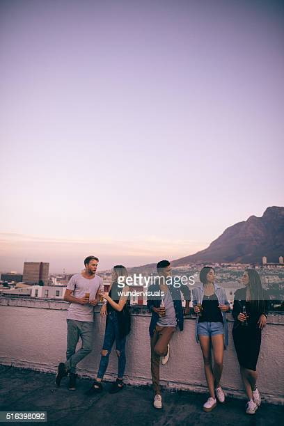 Young adult friends drinking on a summer rooftop party