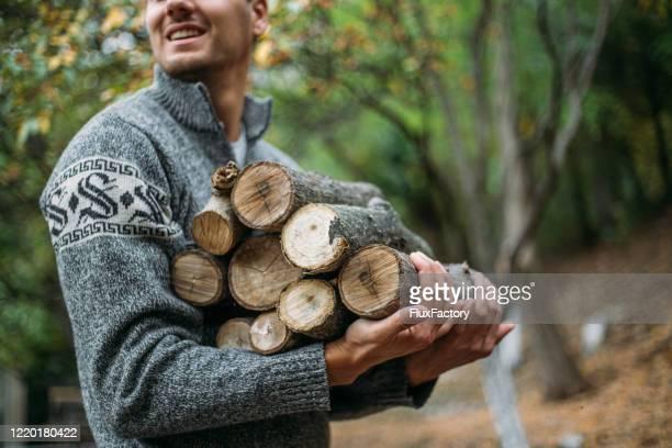 森の中で薪を集める若い成人男性 - 薪 ストックフォトと画像