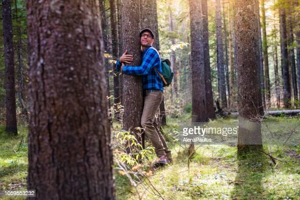 jonge volwassen man knuffelen het mooie bos en de bomen - bewondering stockfoto's en -beelden
