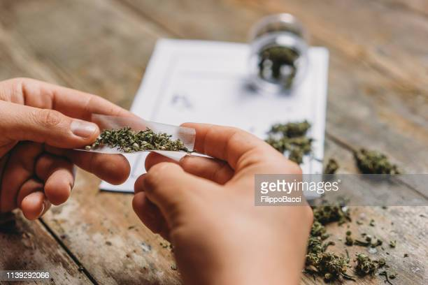young adult man rolling a marijuana joint - cannabis plant stock photos and pictures