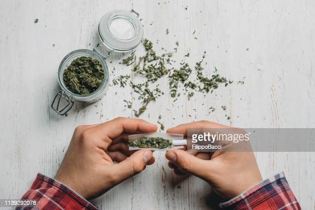 young adult man rolling a marijuana joint - marijuana joint stock pictures, royalty-free photos & images