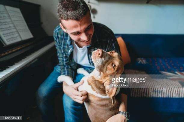 自宅で犬と遊ぶ若い大人のピアニストの男 - 訓練犬 ストックフォトと画像