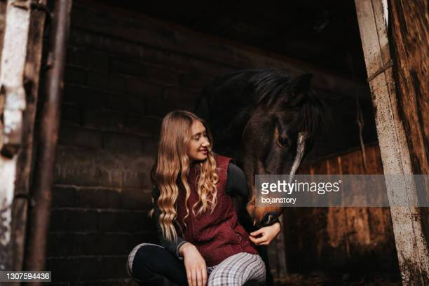 young adult woman feeding her horse in a stable - horse stock pictures, royalty-free photos & images