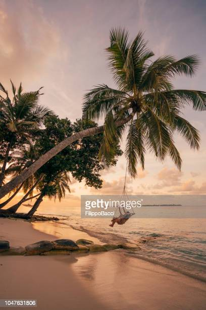 young adult woman relaxing on a swing in a tropical paradise - idyllic stock pictures, royalty-free photos & images