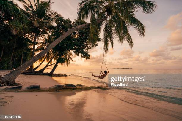 young adult woman relaxing on a swing in a tropical paradise - perfection stock pictures, royalty-free photos & images
