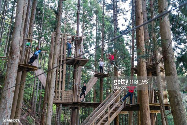Young adults in a large forest obstacle course wearing harnesses