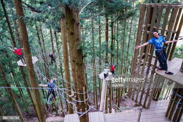young adults in a large forest obstacle course wearing harnesses - obstacle course stock photos and pictures
