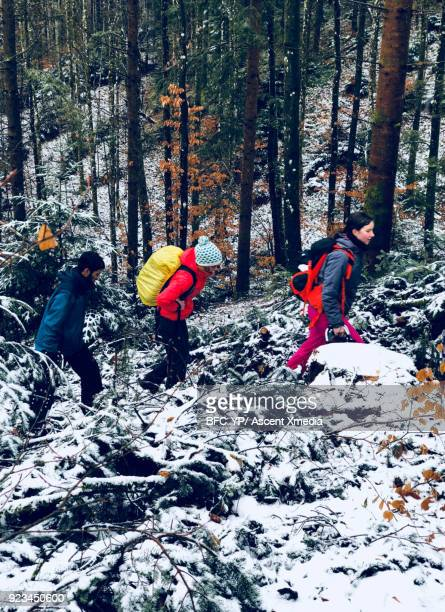 Young adults walk along snowy forest path together