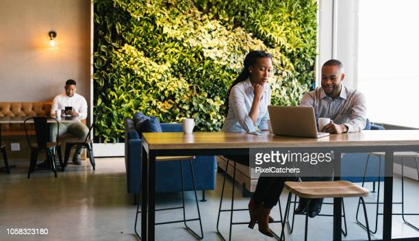 young adults working in casual office environment - responsible business stock photos and pictures