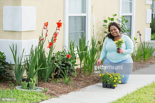 young african american woman gardening - images of fat black women stock photos and pictures