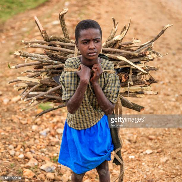 young african girl carrying brushwood, southern kenya, east africa - child labour stock pictures, royalty-free photos & images