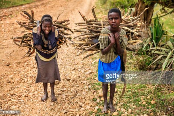 young african girls carrying brushwood, southern kenya, east africa - child labour stock pictures, royalty-free photos & images