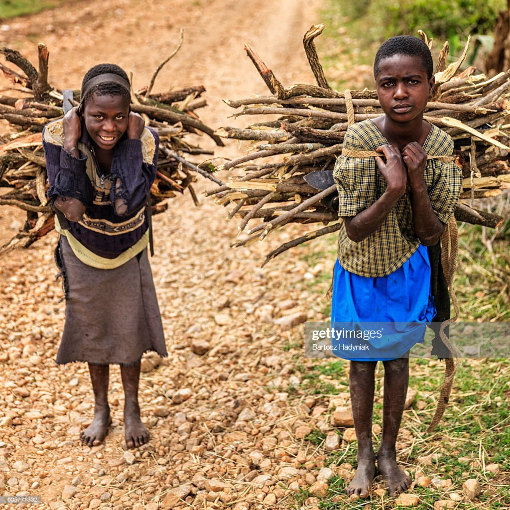 Young African girls carrying brushwood, southern Kenya, East Africa : Stock Photo