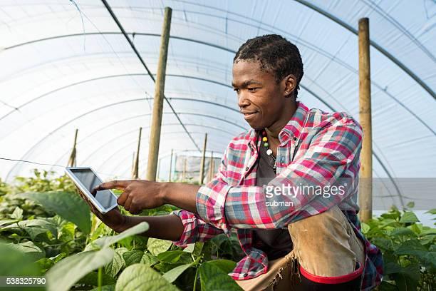 Homem africano jovem auxiliar de embarque-e a apontar para tablet