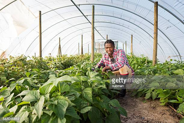Young African Man Standing Smiling garden