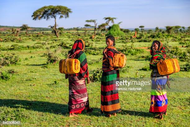 young african women carrying water from the well, ethiopia, africa - ethiopia stock photos and pictures