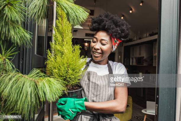 a young african-american woman enjoys gardening at home - african american ethnicity stock pictures, royalty-free photos & images