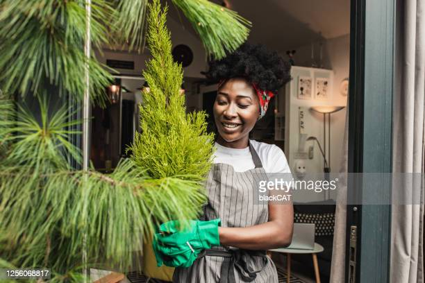 a young african-american woman enjoys gardening at home - urban garden stock pictures, royalty-free photos & images