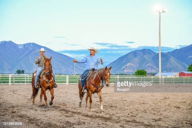 young american cowboys practice rodeo roping skills on horseback - spanish fork utah stock pictures, royalty-free photos & images