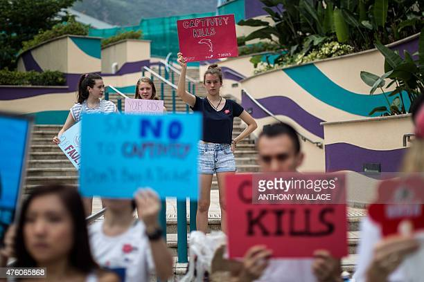 Young animal rights activists hold placards as they attend a protest against the captivity of dolphins outside local theme park Ocean Park during an...