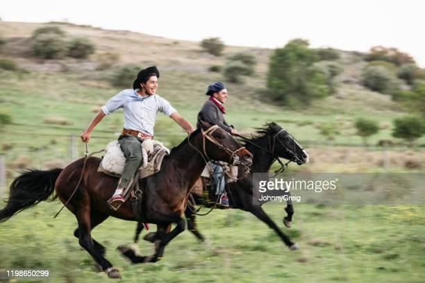 jeunes gauchos argentins se fauquant à cheval - argentine photos et images de collection