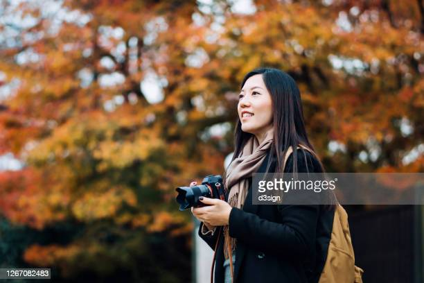 young asian female backpacker enjoying the beautiful nature autumn scenics and taking pictures of the multi-coloured maple leaves with camera outdoors - south korea stock pictures, royalty-free photos & images
