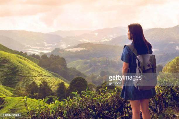 バックパッカープランを持つ若いアジアの女性旅行者夕日の中で茶畑を歩く