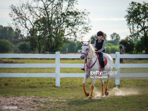 若いアジアの女の子は農場で馬に乗って楽しみます, 牧場での女の子乗馬訓練, 彼女はタイで白い色のアラビア馬に乗って - 手綱 ストックフォトと画像